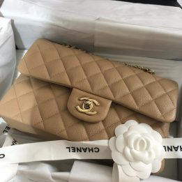 Chanel Small Classic Flap Bag in Beige Caviar Light Gold Hardware