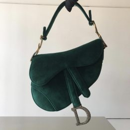 Dior Mini Saddle in Green Velvet with aged gold tone metal and rhinestones