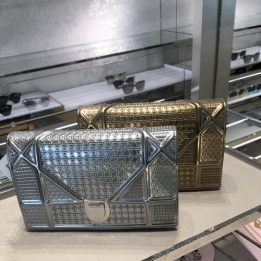 Dior WOC Microcannage in Silver and Gold